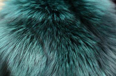 colore pelliccia must have 2017 2018